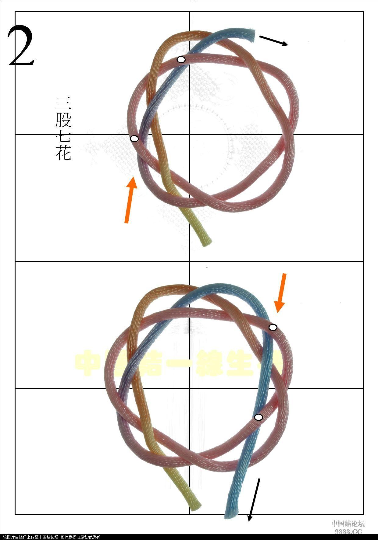中国结论坛 三股七花  一线生机-杨朝宗专栏 1005251809ecb9c9d2f2fa834f