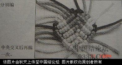 中国结论坛 立体桃教程  图文教程区 10052614181ad91f5d2710f6c4