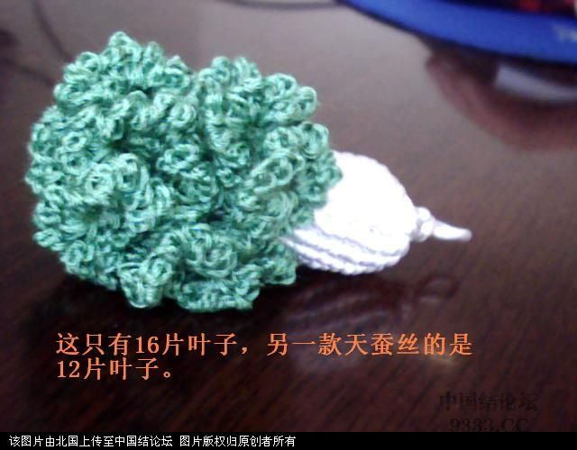 中国结论坛 5#线斜卷结白菜过程图  立体绳结教程与交流区 1006011659891cfd9ac6f9bb02