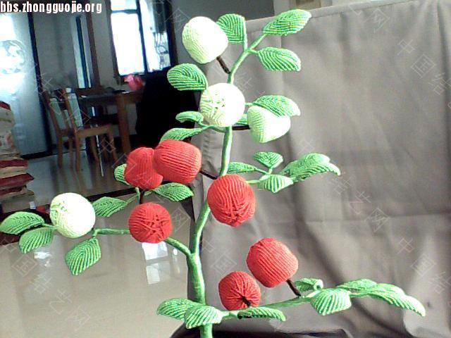 中国结论坛 果树盆景  作品展示 1010181012d3582d21364a685e