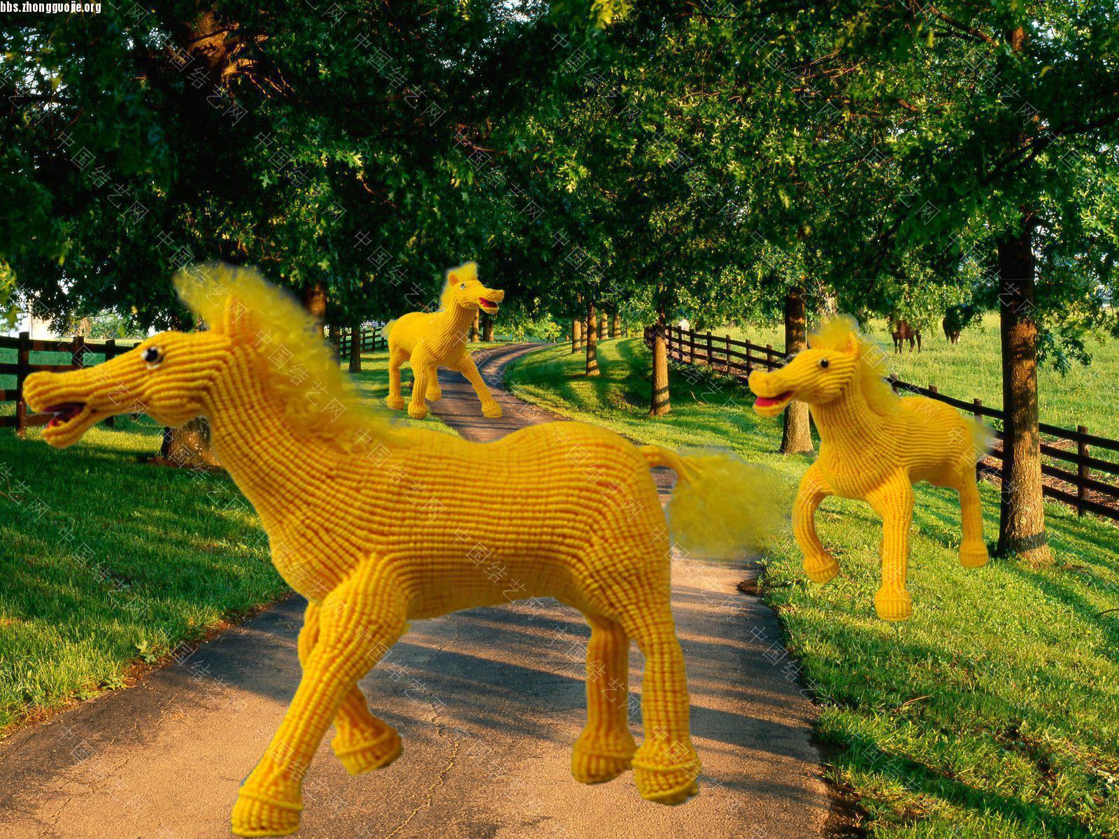 中国结论坛 我曾在网上看见黑龙江的结友编的八匹马,我非常喜欢,我试着编了一匹  立体绳结教程与交流区 1012032112e50ee8123c52816a