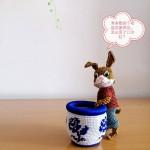 兔子的烦恼