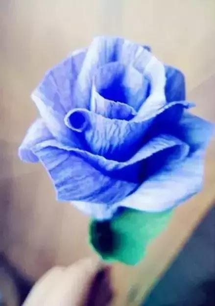 儿童最容易折的玫瑰花 最简单幼儿园手工花朵