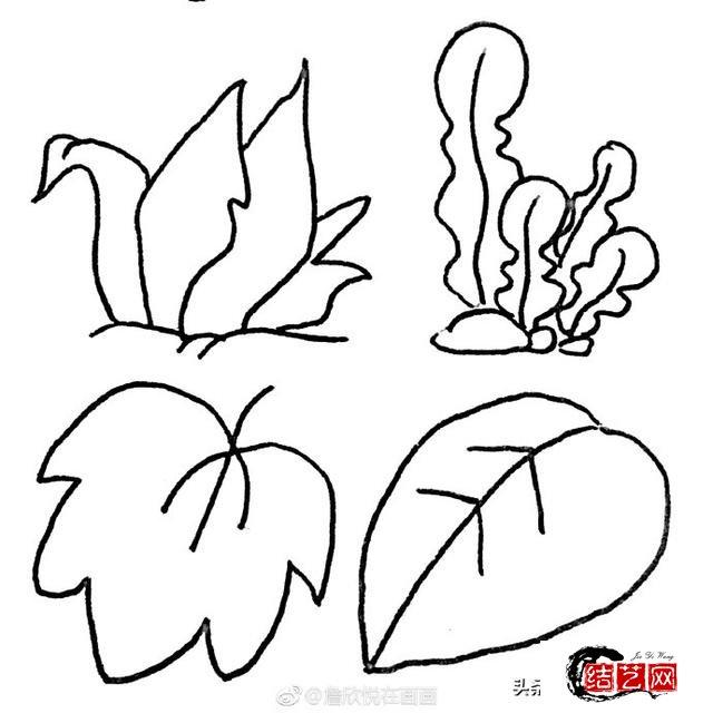 36种叶子的简笔画素材~值得收藏